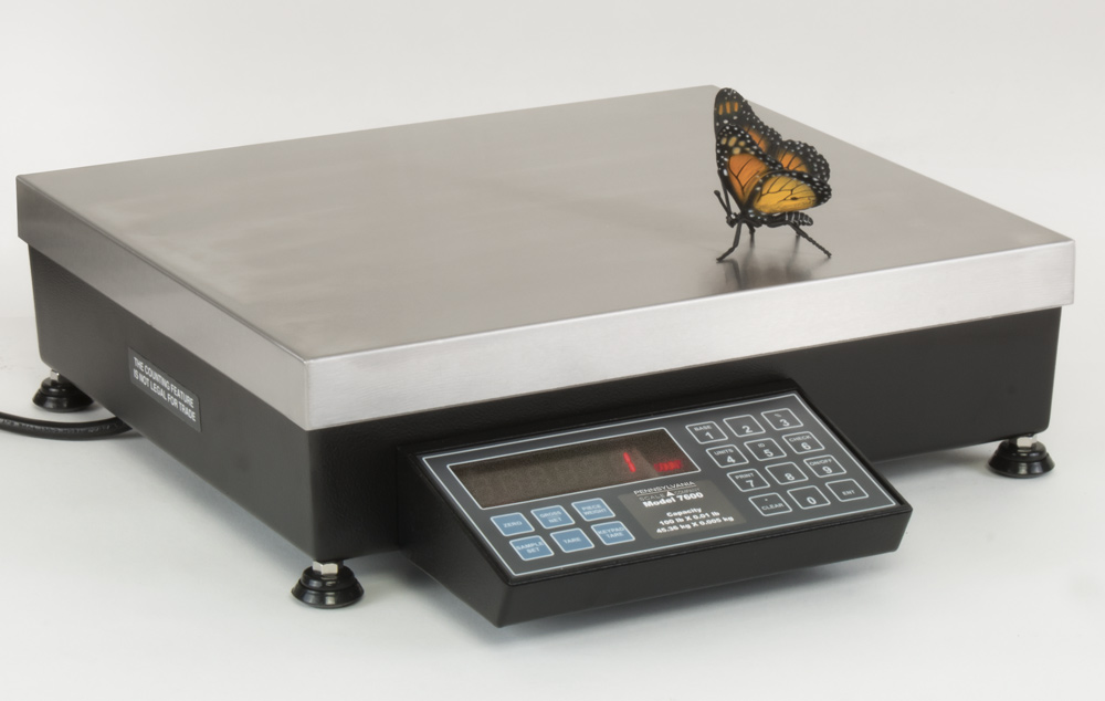 7600-Series-Bench-Scale-PA-Scale